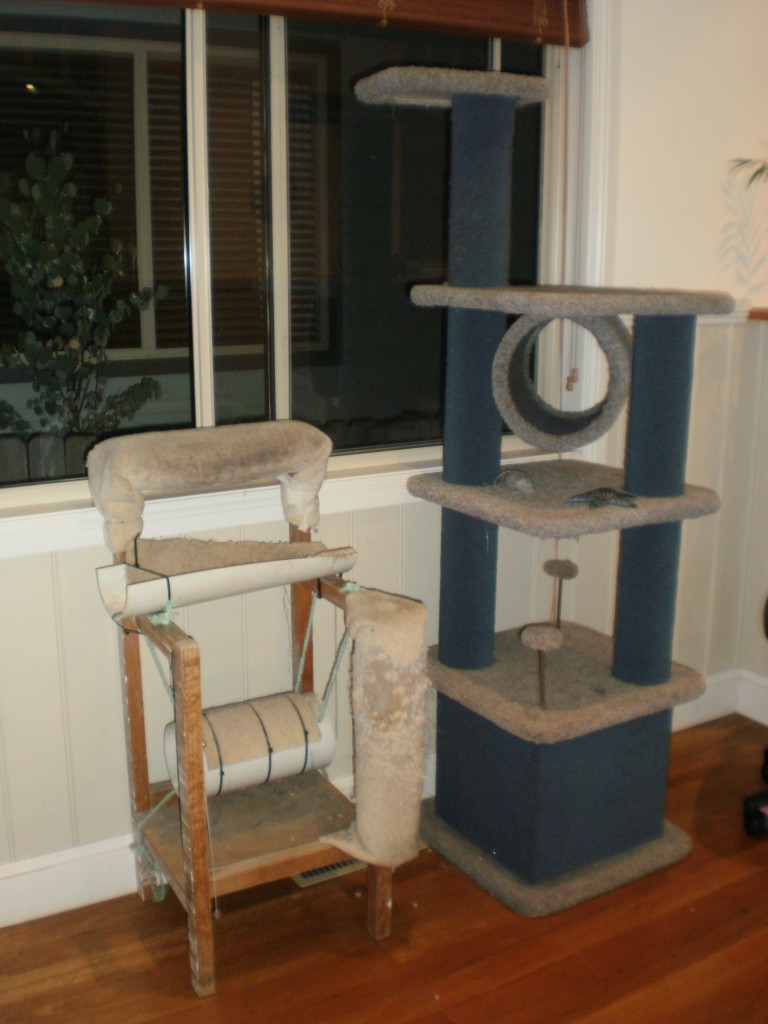 Cat tree - with assists